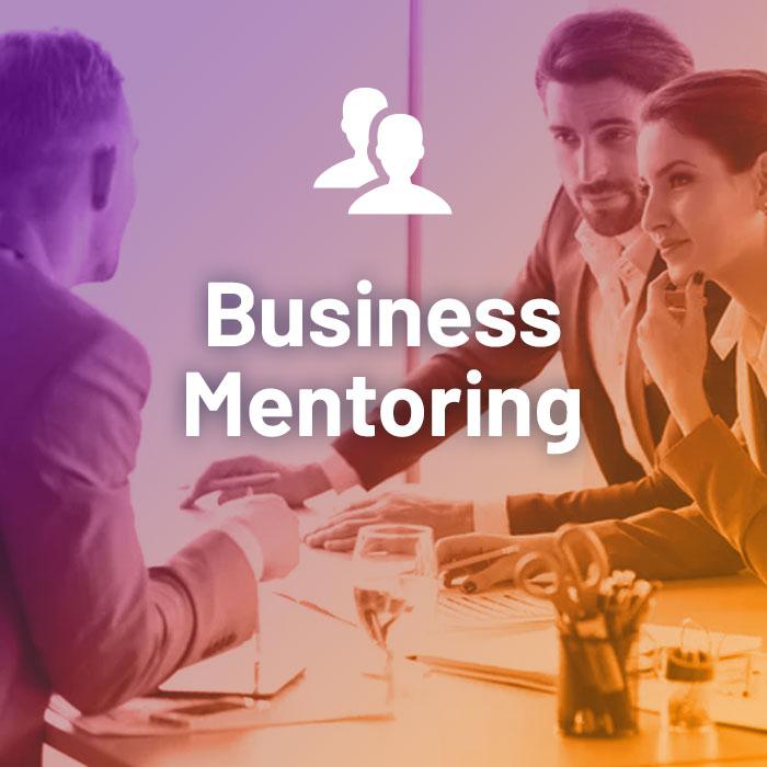 SME Mentoring